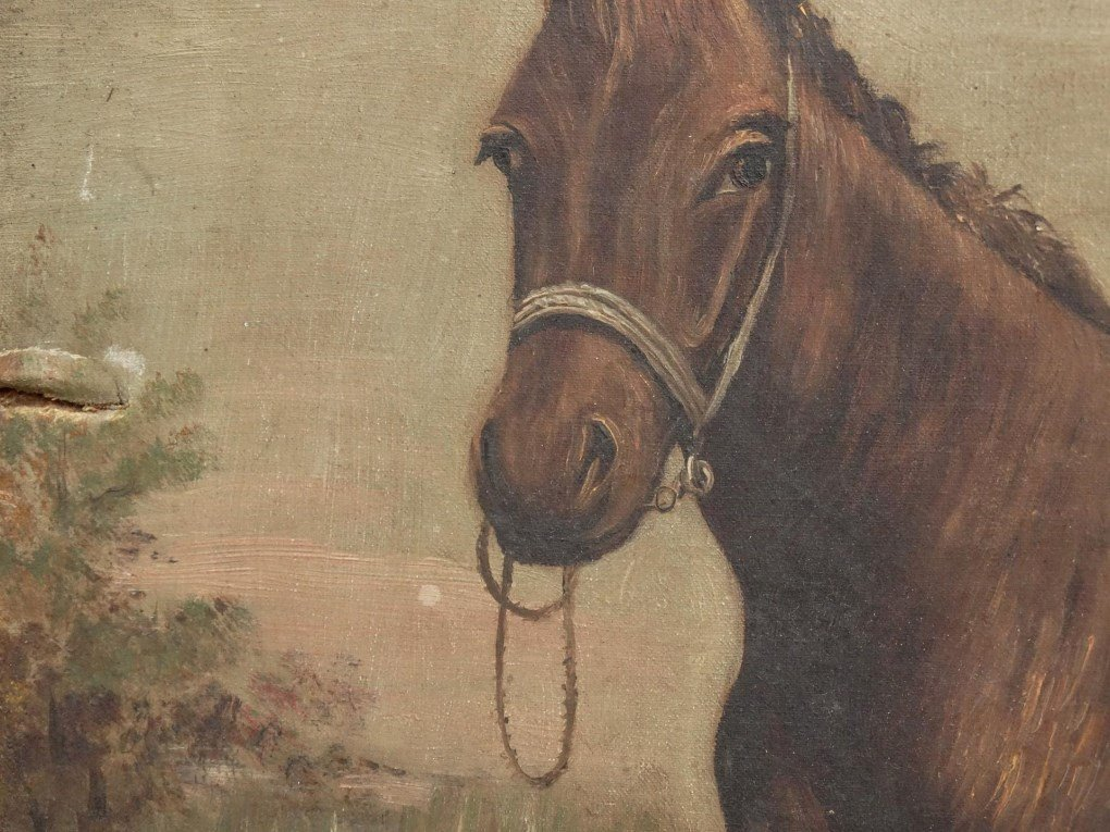 American School, Portrait Of A Horse - 4