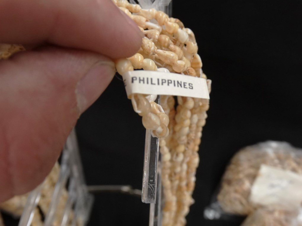 Shell Necklaces - 4