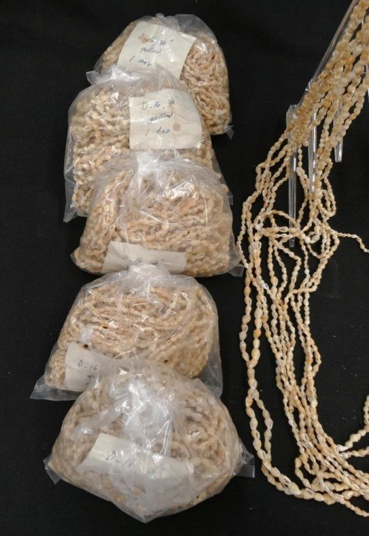 Shell Necklaces - 6