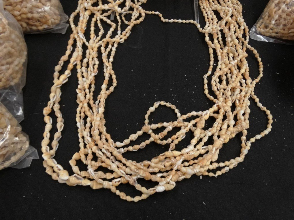 Shell Necklaces - 7