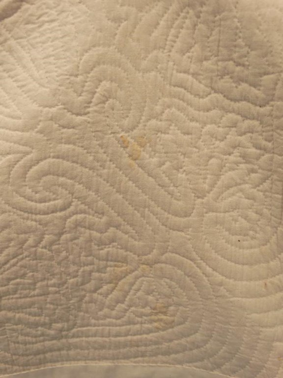 Hawaiian Quilt - 8