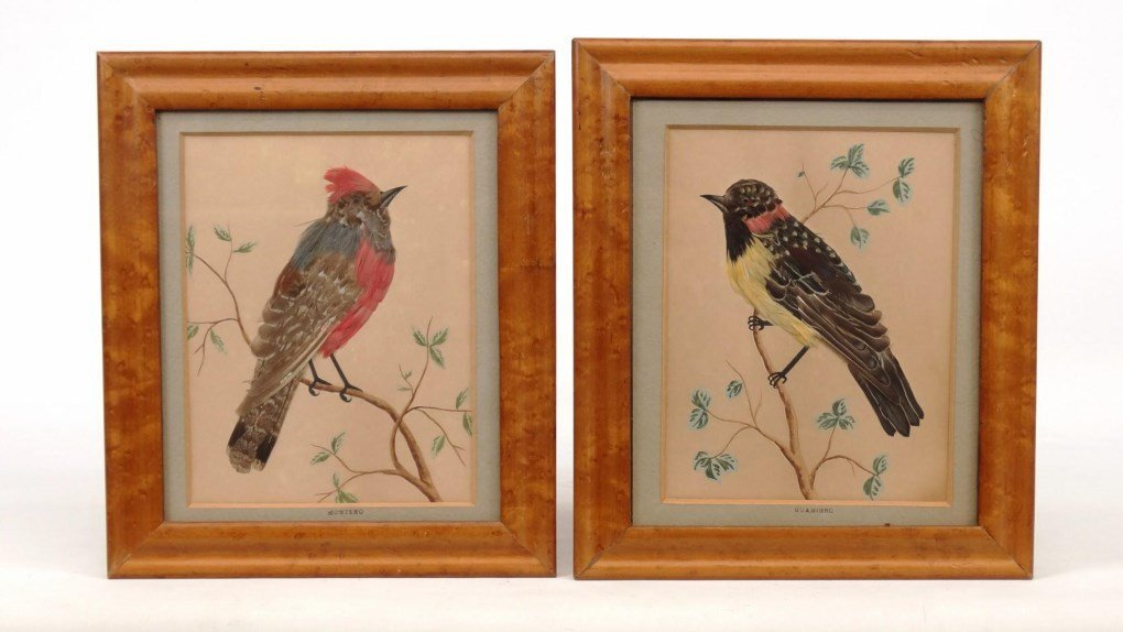 Pair 19th c. Feather Pictures