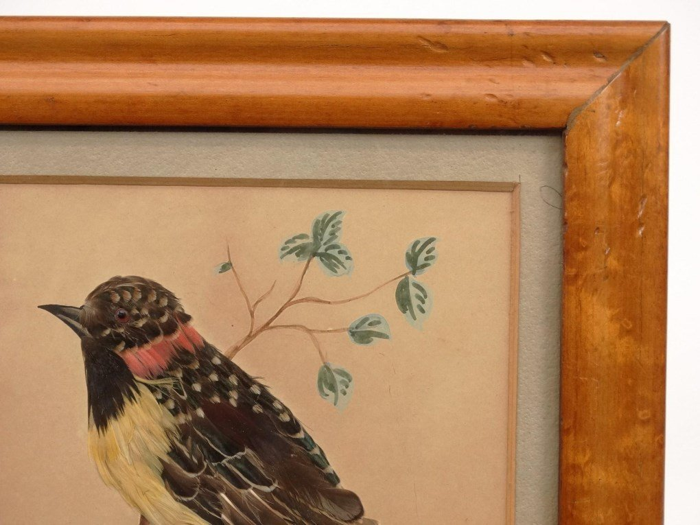Pair 19th c. Feather Pictures - 4