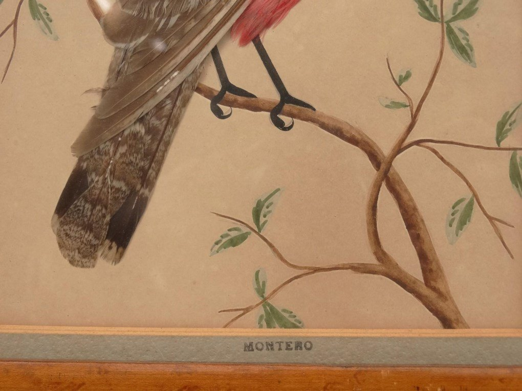 Pair 19th c. Feather Pictures - 8