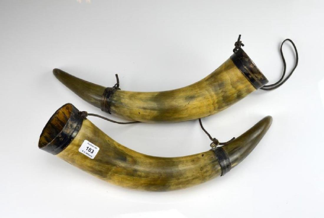 Pair of silver mounted drinking horns