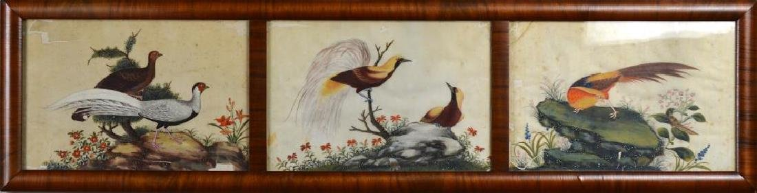 CHINESE EXPORT PITH TRIPTYCH PAINTING OF BIRDS