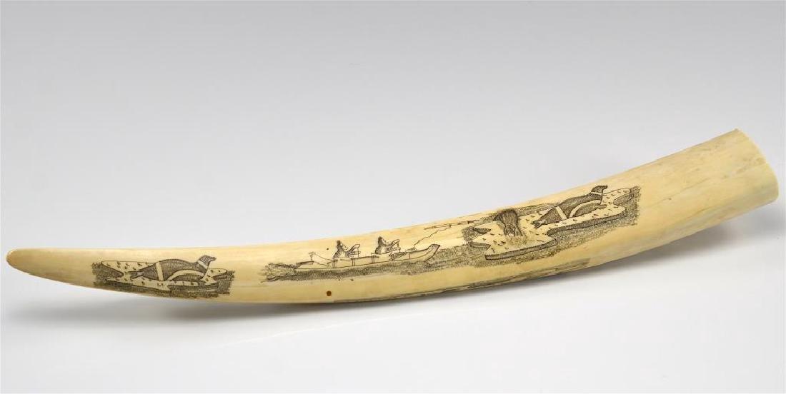 Inuit tusk scrimshaw cribbage board - 4