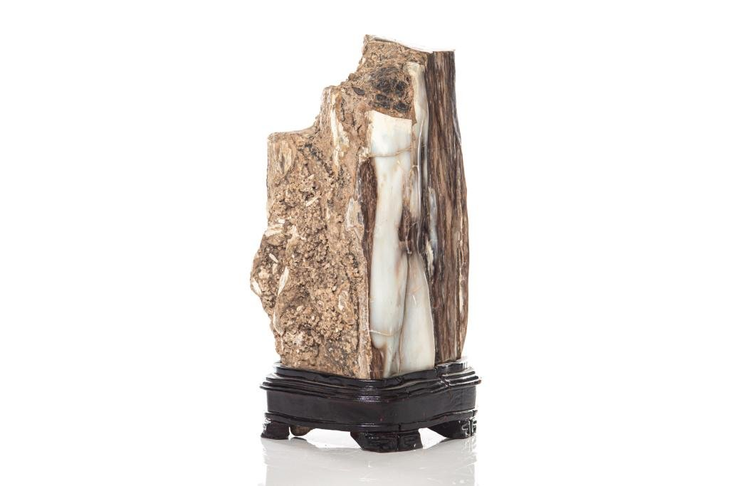 FOSSILIZED WOOD SCHOLAR'S DISPLAY ON STAND