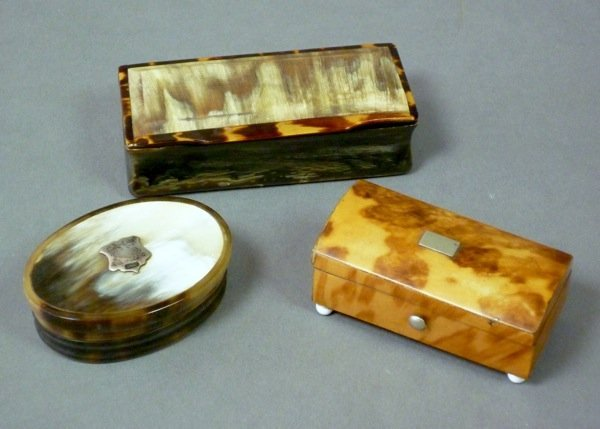 1012: ENGLISH HORN AND TORTOISE SHELL SNUFF BOXES