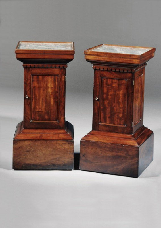 24: A pair of mahogany pedestal cabinets, in early 19t