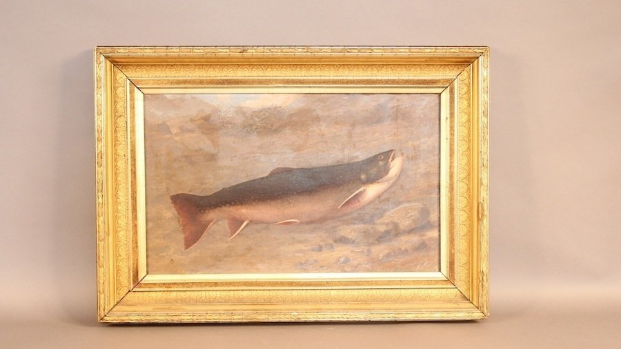 Portrait of a fish by Louis Ewer
