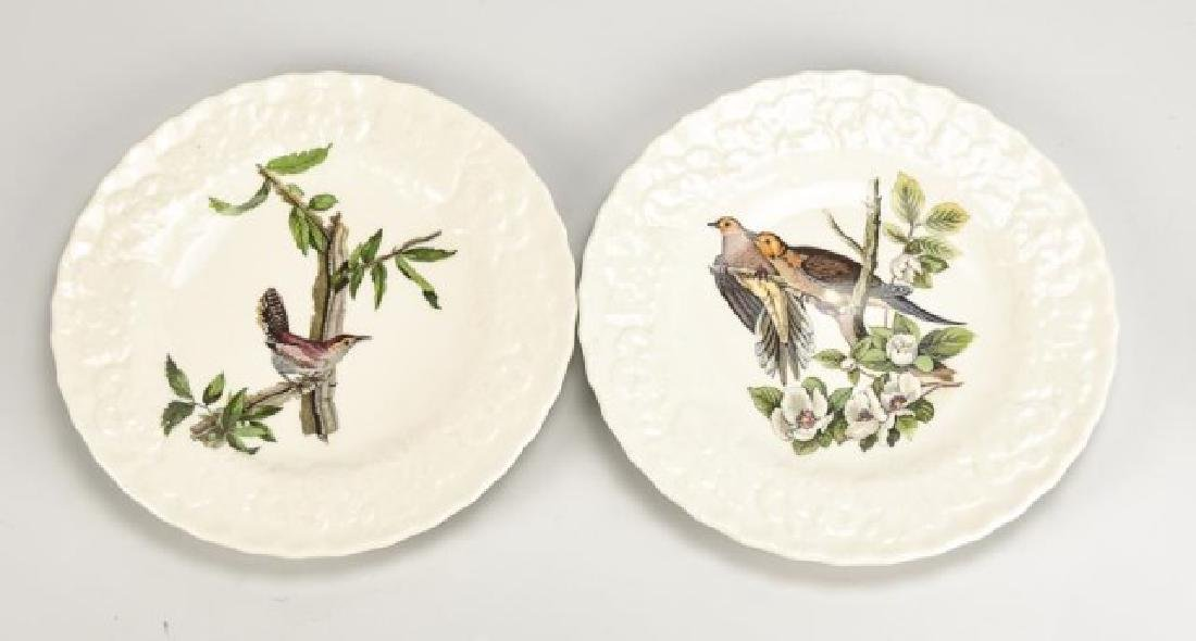 Set of 8 Alfred Meakin Birds of America Plates - 2