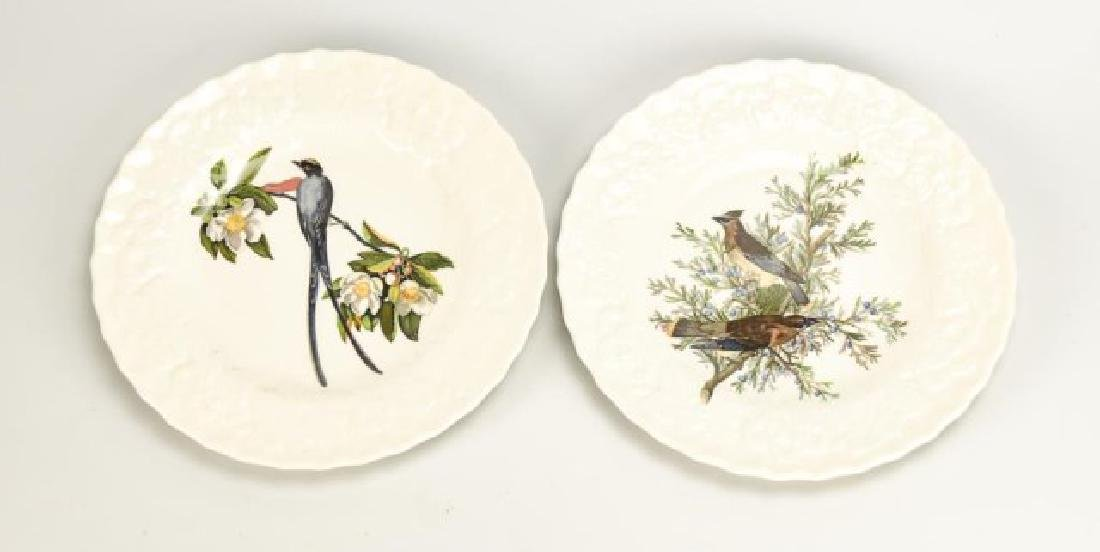 Set of 8 Alfred Meakin Birds of America Plates - 5