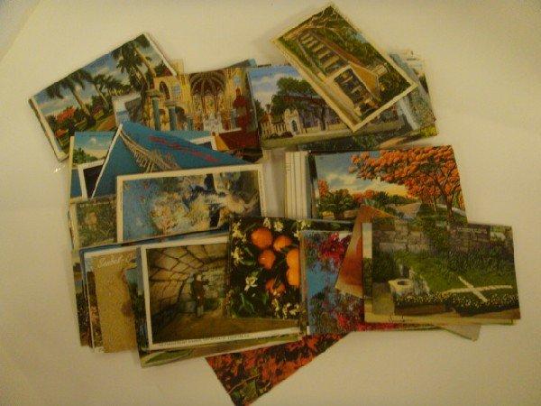 104: 271 Assorted Florida Postcards