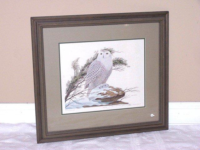 "6: John A Ruthven signed Print ""Snowy Owl"""