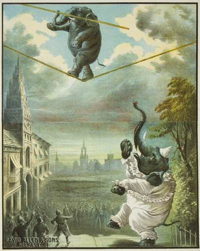 185: Elephant on a Wire. ca. 1890