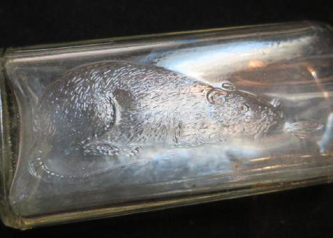 Clear Glass Rat Embossed POISON Bottle: