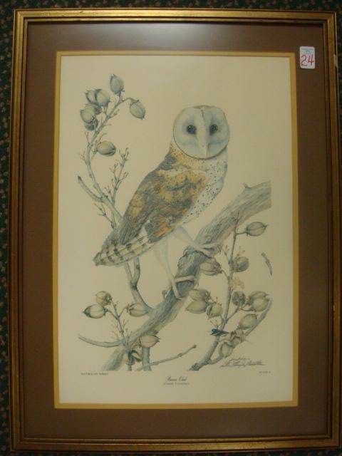24: Signed SALLIE MIDDLETON Barn Owl Print: