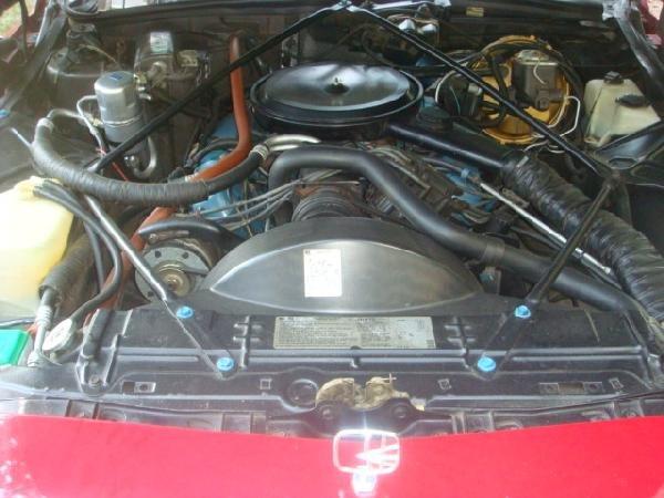 100A: 1979 CADILLAC LeCABRIOLET Convertible Conversion: - 3