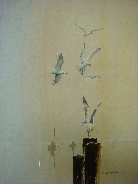 231: Signed FRED GIBSON Seagull Watercolor: - 2