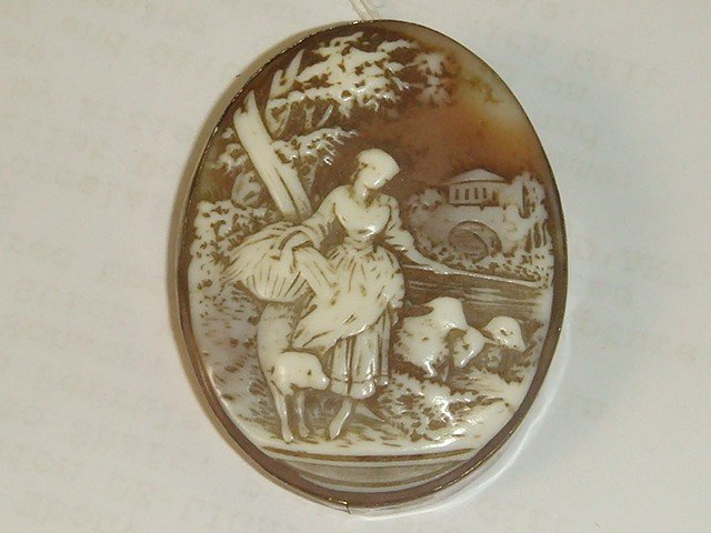173: Victorian Shell Carved Pictorial Cameo in Brooch: