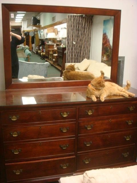 180E: CRAFTIQUE Eight Drawer Mahogany Dresser with Mirr