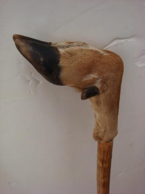 265: Three Antler and Deer Hoof Walking Sticks: - 3