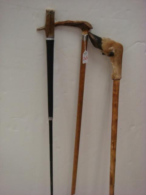 265: Three Antler and Deer Hoof Walking Sticks: - 4