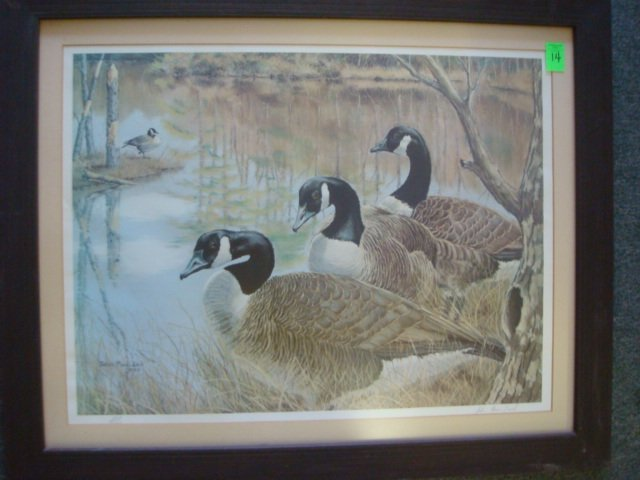 14: Signed and Numbered JOHN MACLEOD Canada Geese Print
