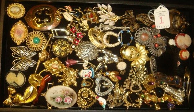 Assortment of Ladies Lapel Pins: