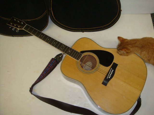 Yamaha FG 345 II Guitar with Hard Shell Case: - 4