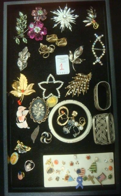 Ladies Costume Jewelry Pins and Earrings:
