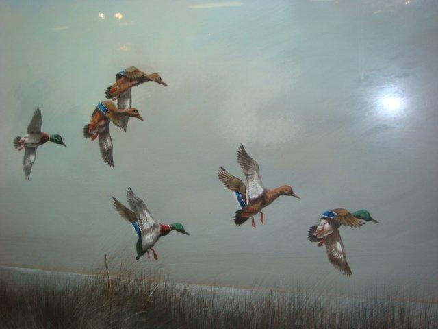 Signed GLYNN MOORE Ducks in Flight Watercolor: - 2