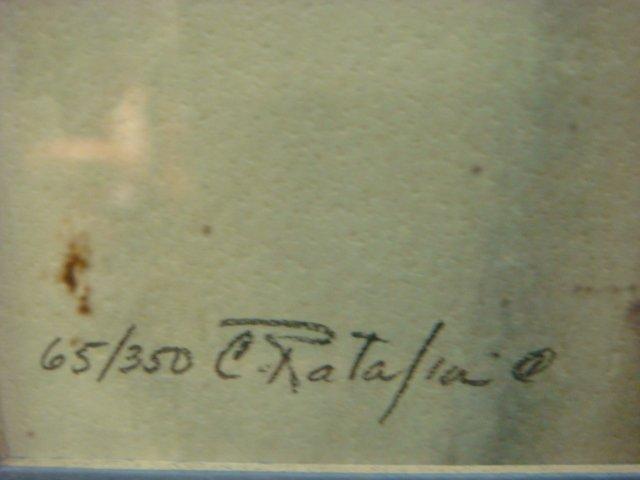 Signed and Numbered C RATALIA Saluki Print: - 4