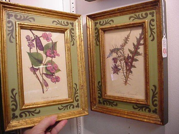 404: Three Floral Botanical Prints in Stenciled Frames: