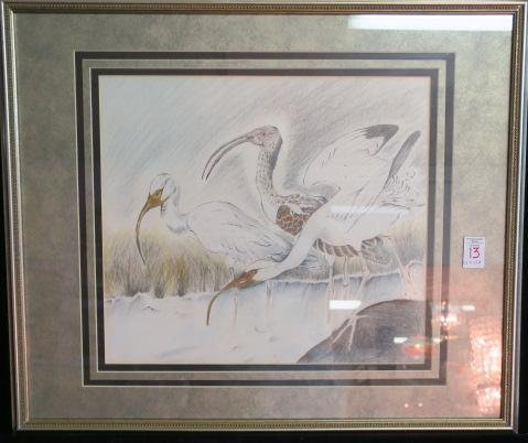 Pencil, Pen & Ink Herons, Signed Linda Phillips: