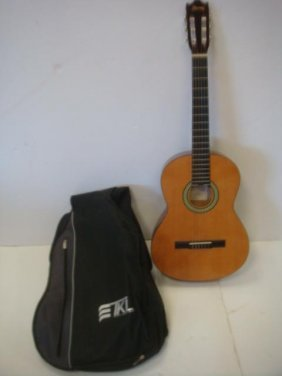 Ibanez Acoustic Guitar And Soft Case: