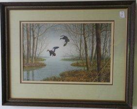 Watercolor, Black Ducks In Flight Signed Peter Hanks: