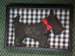 3-D Plush Scottie Dog in Shadow Box Frame: