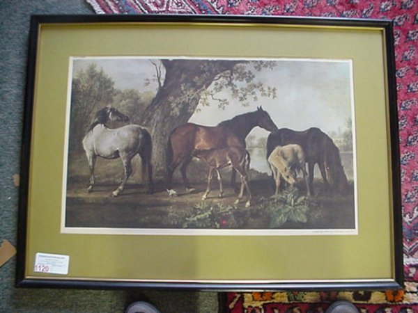 1567: Mares and Colts English Print:
