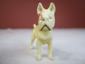 A45-21  EUROPEAN IVORY CARVED BOXER DOG
