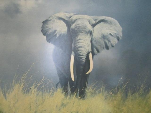 210: E44-1  DAVID SHEPHERD ELEPHANT PRINT - 2