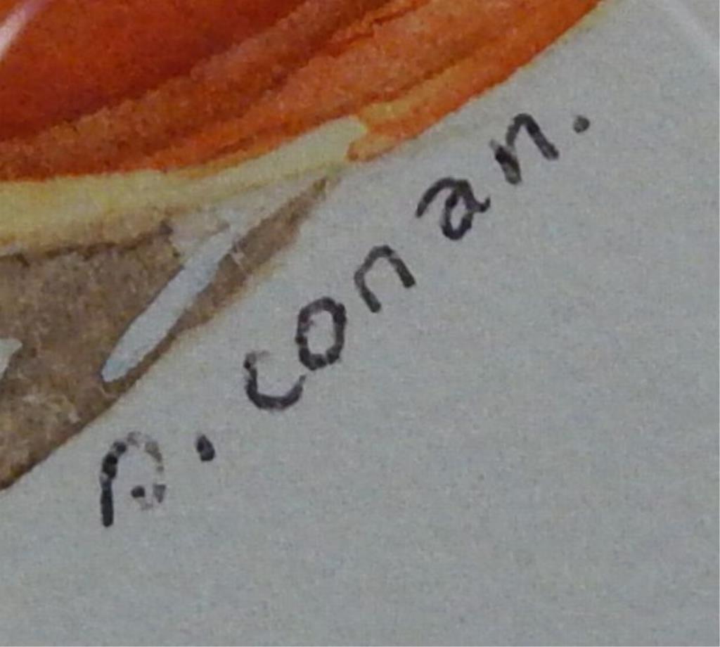 """(424) Gilbert Conan """"Shell Study"""" - 3"""