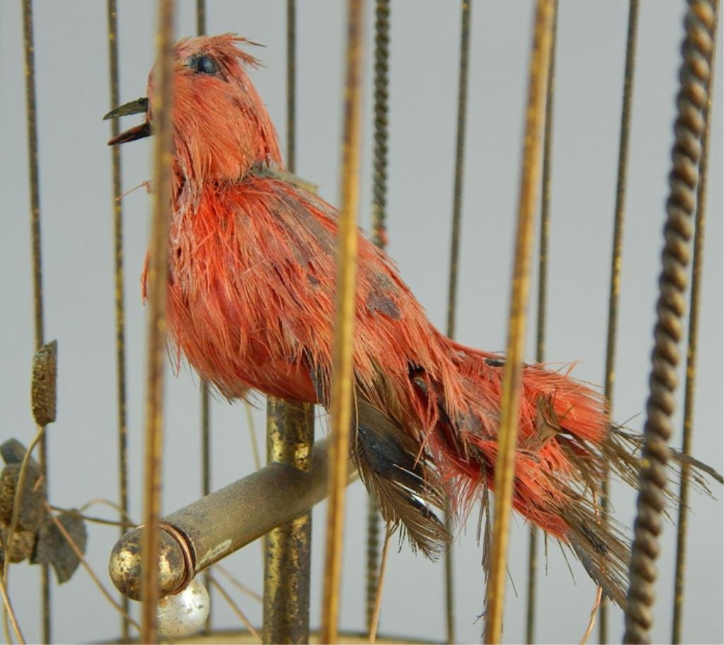 French Automaton Singing Bird in a Cage - 3