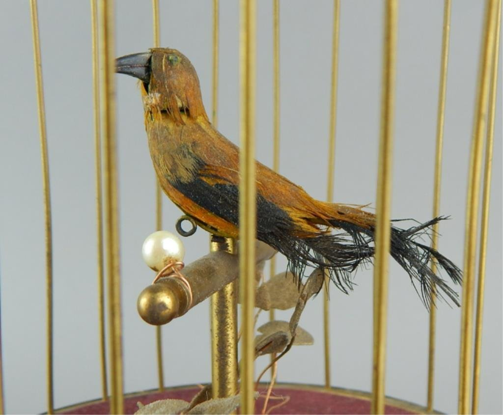 Automaton Singing Bird in a Cage - 3