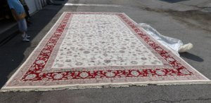 Kassan Rug in Maroon, Pink and White