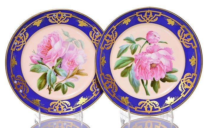 """7 French porcelain botanical plates, largest 9 1/2"""" - 2"""