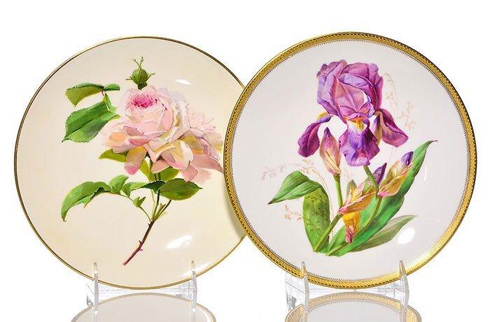 """7 French porcelain botanical plates, largest 9 1/2"""" - 3"""
