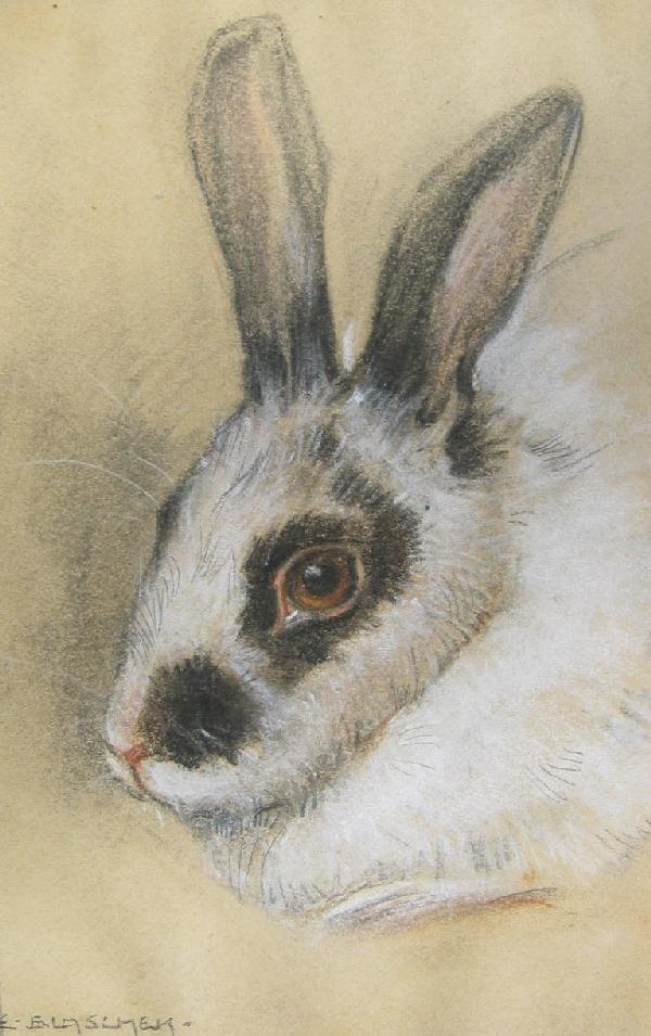 5: Rabbit