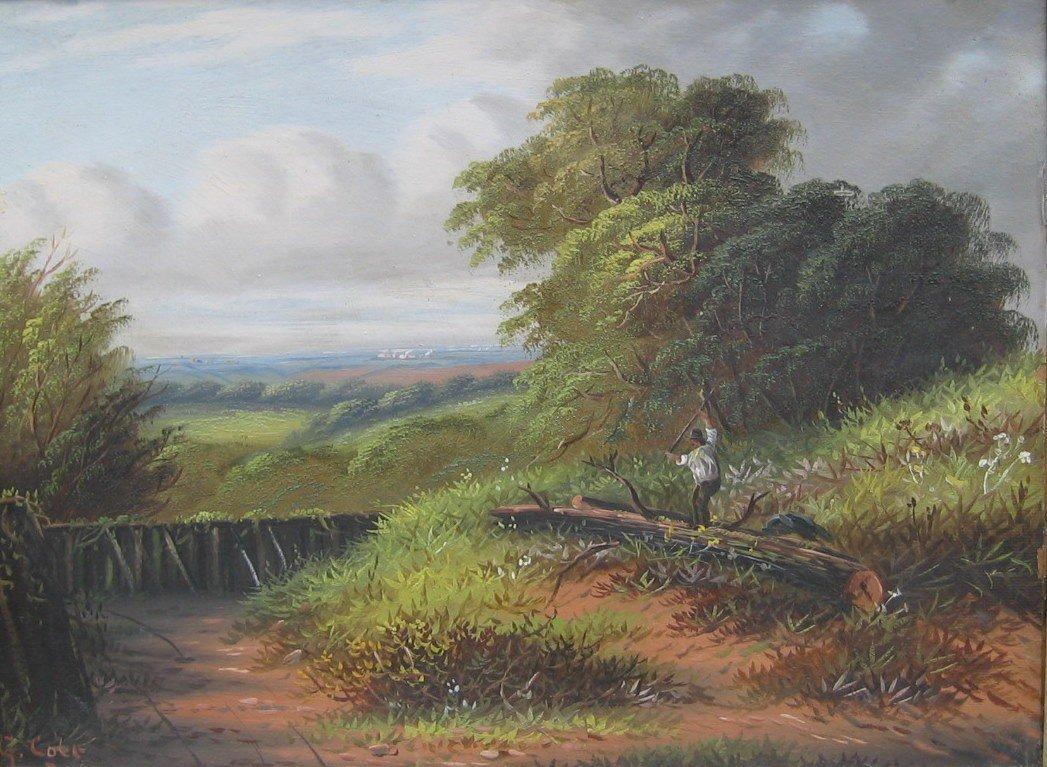 16: Woodcutter in Extensive Landscape